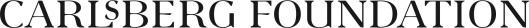 Carlsberg Foundation UK logo_BLACK